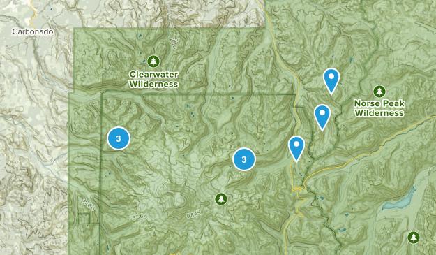 Rainier Park Trails Map
