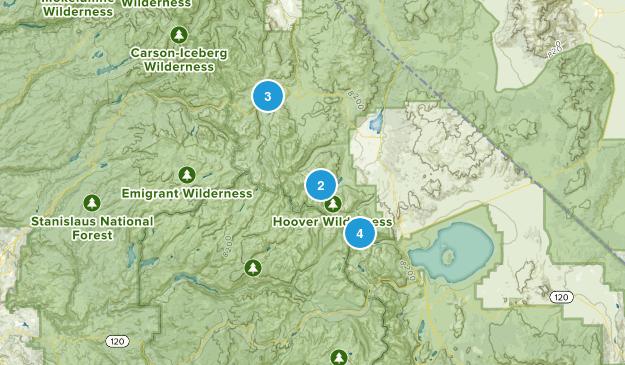 Bridgeport Map