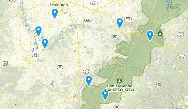 Local Go Tos Map