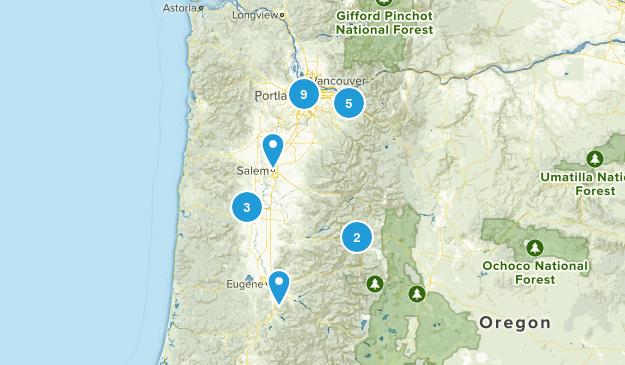 Take Fiona Map