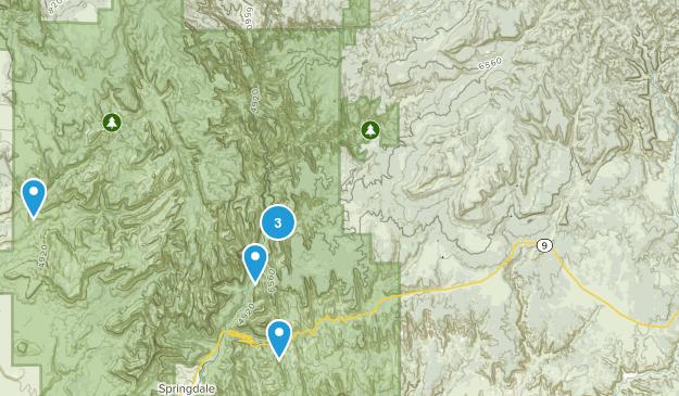 Zion Trails Map
