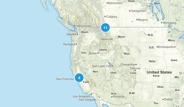 Trails 2017 Map