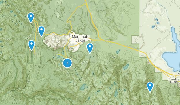 Mammoth  Map