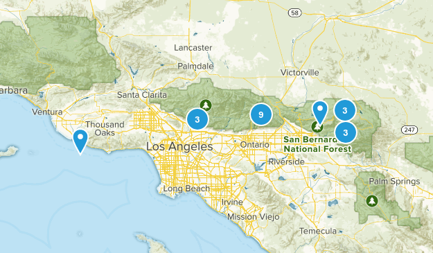 Pup Trails Map