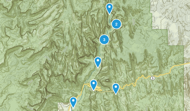 Zion NP Must Map