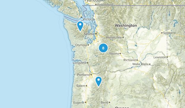 (Seattle) Washington Map