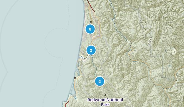 Redwoods Map
