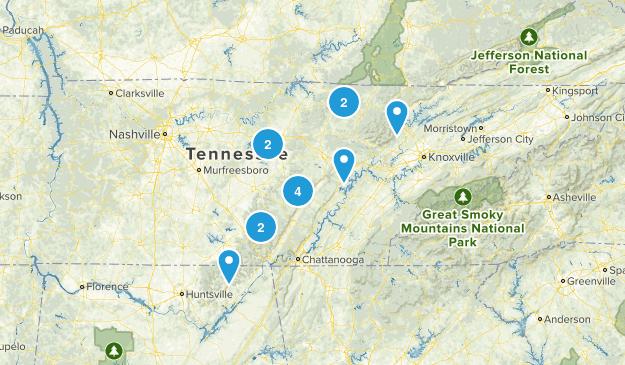 TN (scott) Map