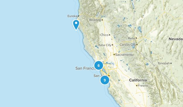 Carlie Map