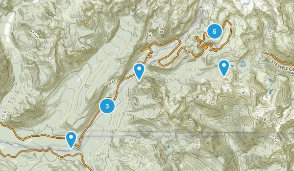 Mt Rainier - Nisqually Entrance Map