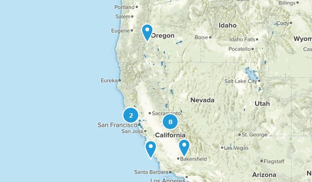 Dog on Leash CA Map