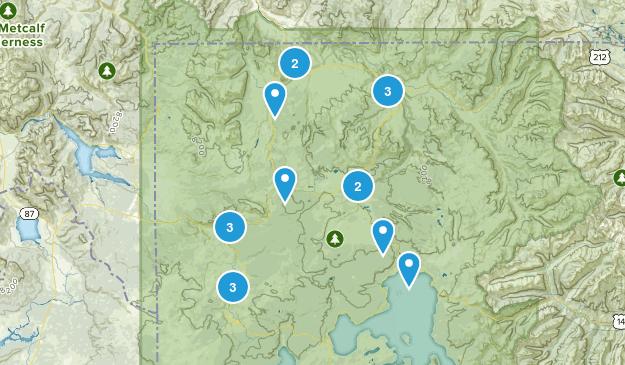 Yellowstone NP Map