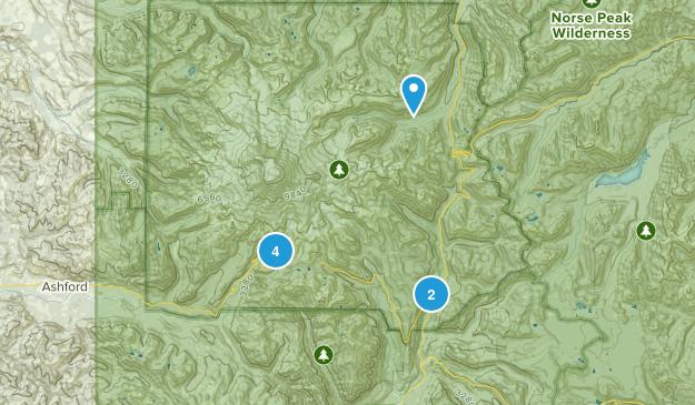 rainer Map