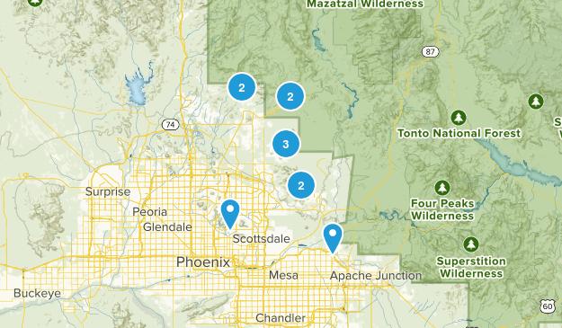 Phx w dog Map
