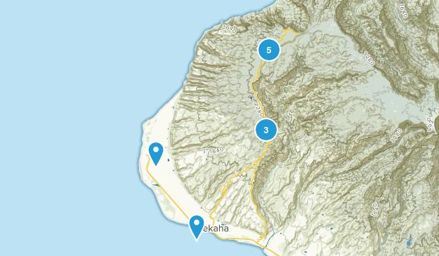 Waimea  Map