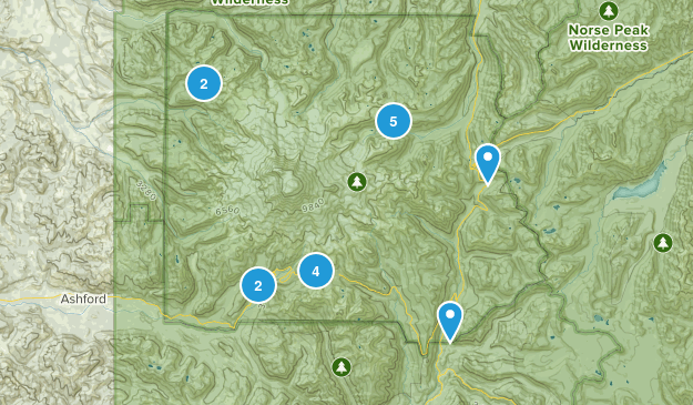 Mnt Rainier Map