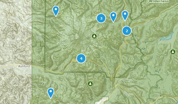 Mt Rainier ⛰ Map