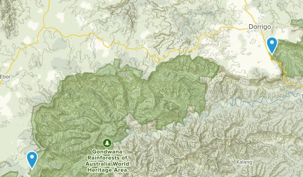 Dorrigo, New South Wales Map