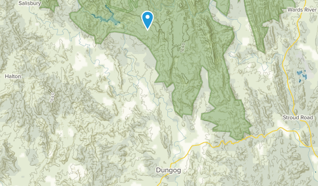 Dungog, New South Wales Map