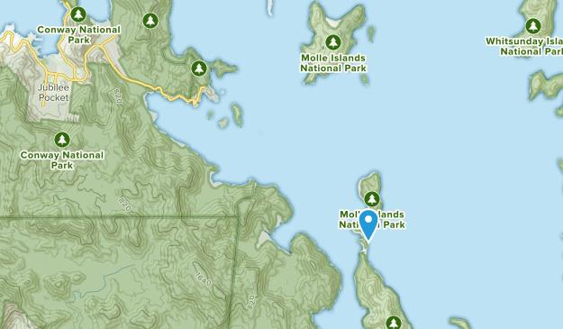 Shute Harbour, Queensland Map