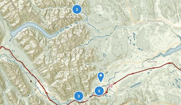 Bighorn No 8, Alberta Map
