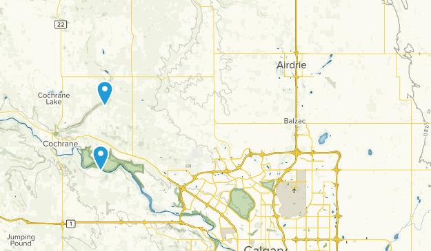 Rocky View No 44, Alberta Map