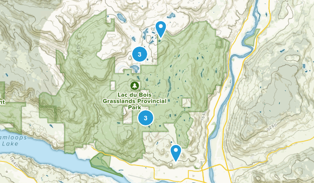 Brocklehurst, British Columbia Map