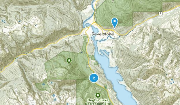 Columbia-Shuswap B, British Columbia Map