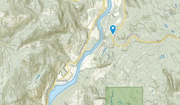 Genelle, British Columbia Map