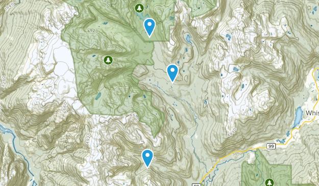 McGuire, British Columbia Map