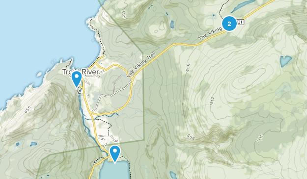Trout River, Newfoundland and Labrador Map