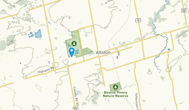 Alliston, Ontario Map