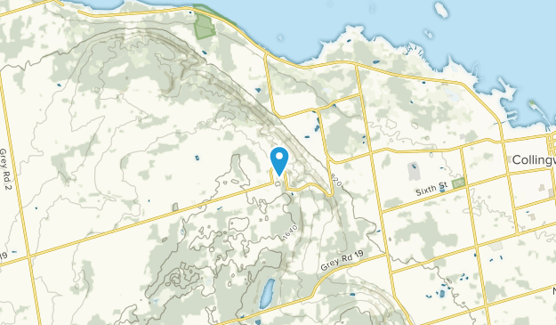 Craigleith, Ontario Map