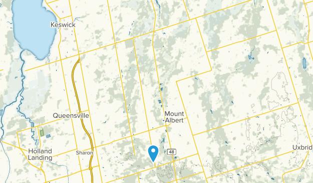 Mount Albert, Ontario Map