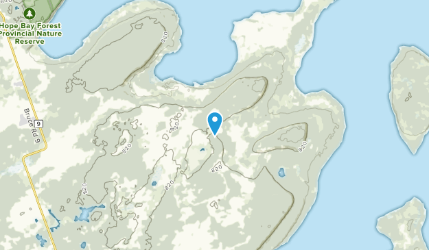 Neyaashiinigmiing Reserve, Ontario Map