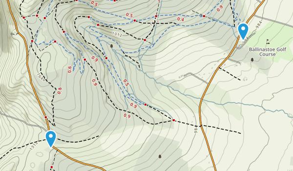 Sleamaine, Wicklow Map