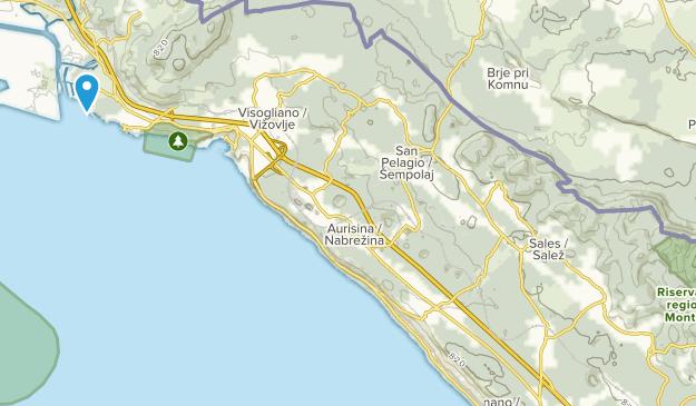 Sgonico, Friuli-Venezia Giulia Map
