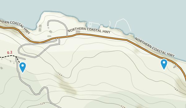 Bog, Saint Ann Map