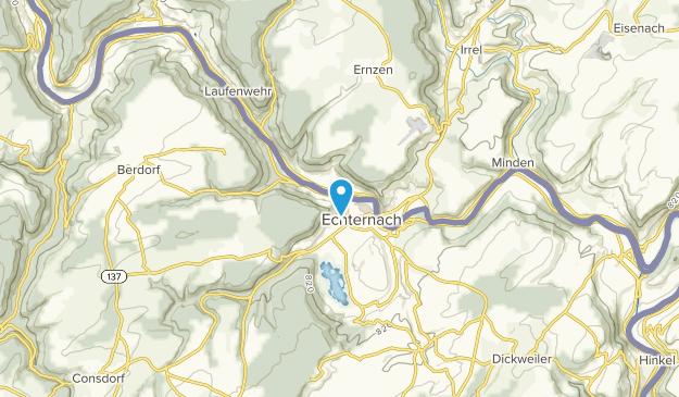 Echternach, Rheinland-Pfalz Map