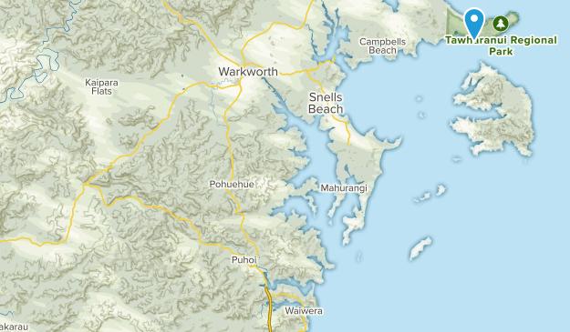 Tawharanui, Auckland Region Map