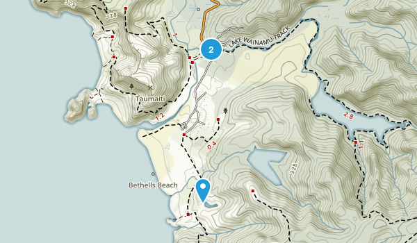 Te Henga (Bethells Beach), Auckland Region Map