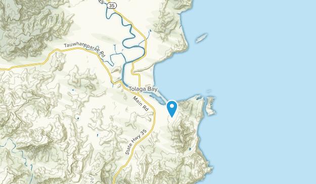 Best Trails near Tolaga Bay, Gisborne New Zealand | AllTrails on bay of plenty new zealand map, marahau new zealand map, auckland new zealand map, mount ngauruhoe new zealand map, waiotapu new zealand map, mount ruapehu new zealand map, piha new zealand map, waikato new zealand map, franz josef glacier new zealand map, lake pukaki new zealand map, hot water beach new zealand map, manukau new zealand map, mount taranaki new zealand map, broadmeadows new zealand map, bay of islands new zealand map, dunedin new zealand map, queen charlotte sound new zealand map, feilding new zealand map, chatham islands new zealand map,