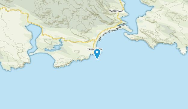 Curio Bay, Southland Region Map