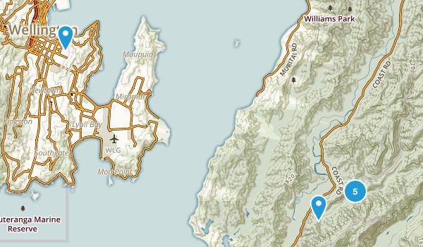 Eastbourne, Wellington Region Map