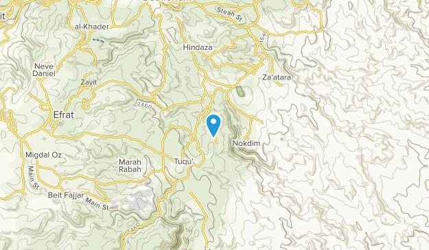 תקוע, West Bank Map