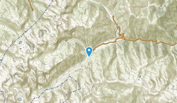 Olgunlar, Artvin Map
