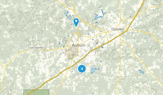 Auburn, Alabama Map