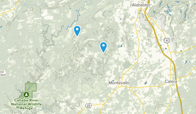 Montevallo, Alabama Map