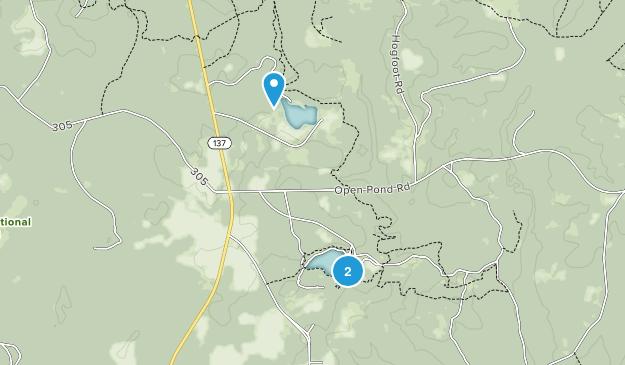 Wing, Alabama Map