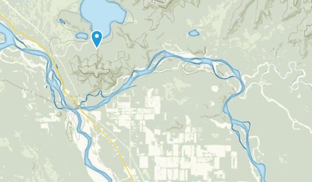 Delta Junction, Alaska Map